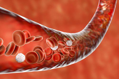 vasodilation and vasoconstriction